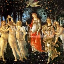 Α117 ΦΩΤΟΤΑΠΕΤΣΑΡΙΑ ΠΡΙΜΑΒΕΡΑ (BOTICCELLI 1478)